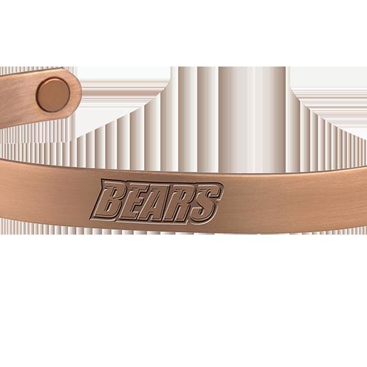 Bridgewater State University Bears
